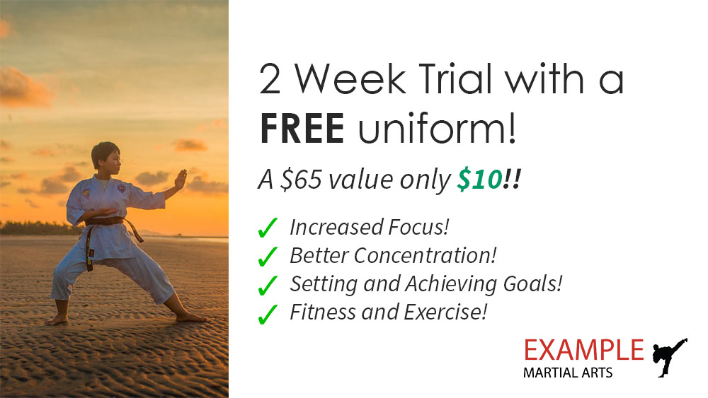 2-week-martial-arts-promotion